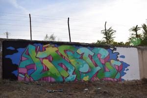 DSC 0111